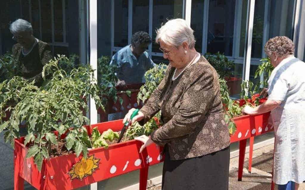 jardinería para personas mayores